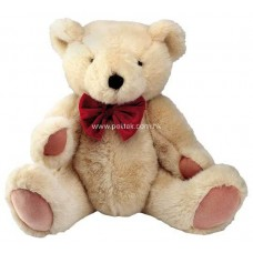 Lovely Teddy Bear (10 Inches Height)